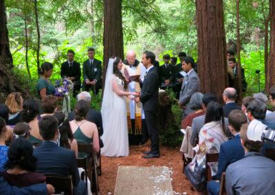 Wedding at Island Farm, San Gregorio, CA